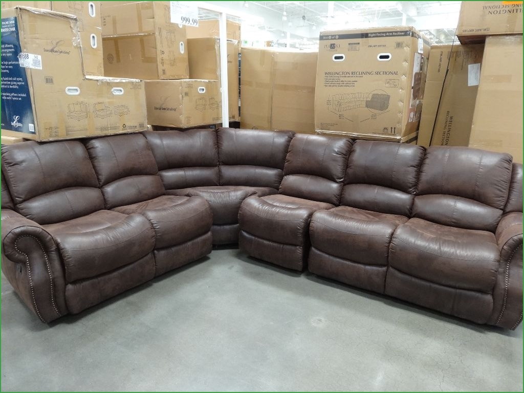 Cool Sectional Sofas St Louis 30 For Your Down Feather Sectional Intended For Down Feather Sectional Sofa (#4 of 12)