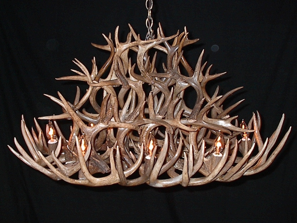 12 Inspirations Of Stag Horn Chandelier