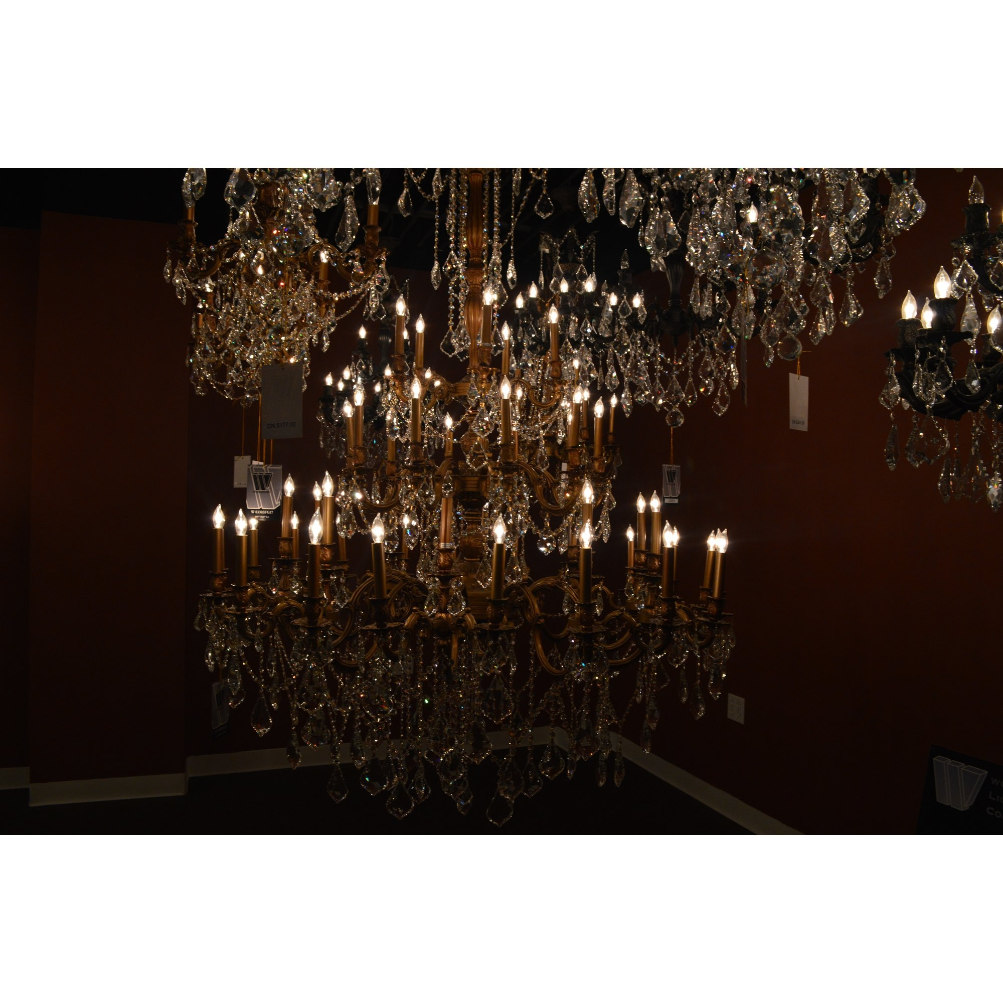 Worldwide Lighting Windsor 45 Light Crystal Chandelier Wayfair Inside Crystal Branch Chandelier (#12 of 12)
