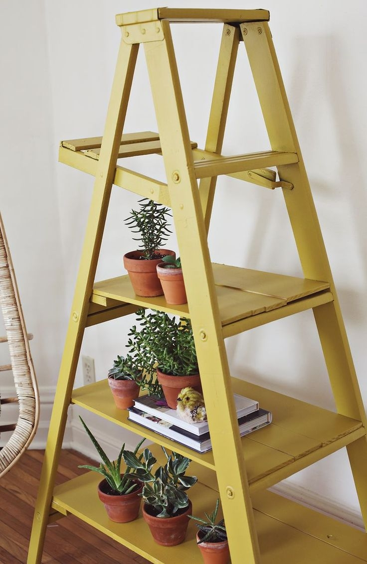 25 Great Ideas About Ladder Shelves On Pinterest Within Ladder Shelves (#3 of 15)