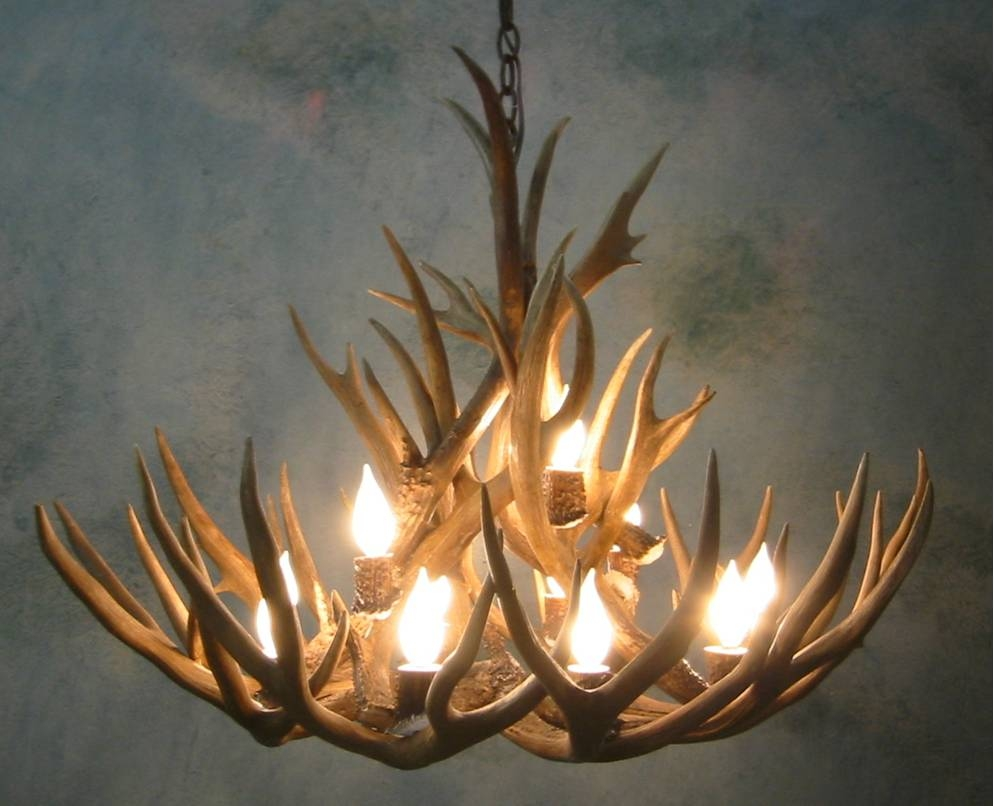 Antler Chandeliers For Sale Real Mccoy Throughout Antler Chandeliers And Lighting (#3 of 12)