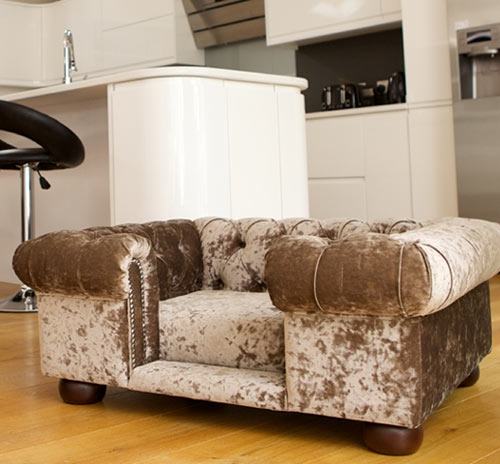 Balmoral Crushed Velvet Dog Sofa Dog Sofa Bed Dog Beds And Doggies Inside Luxury Sofa Beds (#2 of 15)
