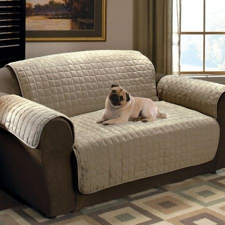 Best 25 Dog Couch Cover Ideas On Pinterest Pet Couch Cover Dog With Regard To Sofa Settee Covers (#4 of 15)