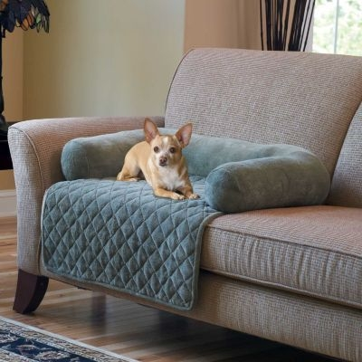 Best 25 Pet Sofa Cover Ideas On Pinterest Pet Couch Cover Sofa In Sofa Settee Covers (#5 of 15)