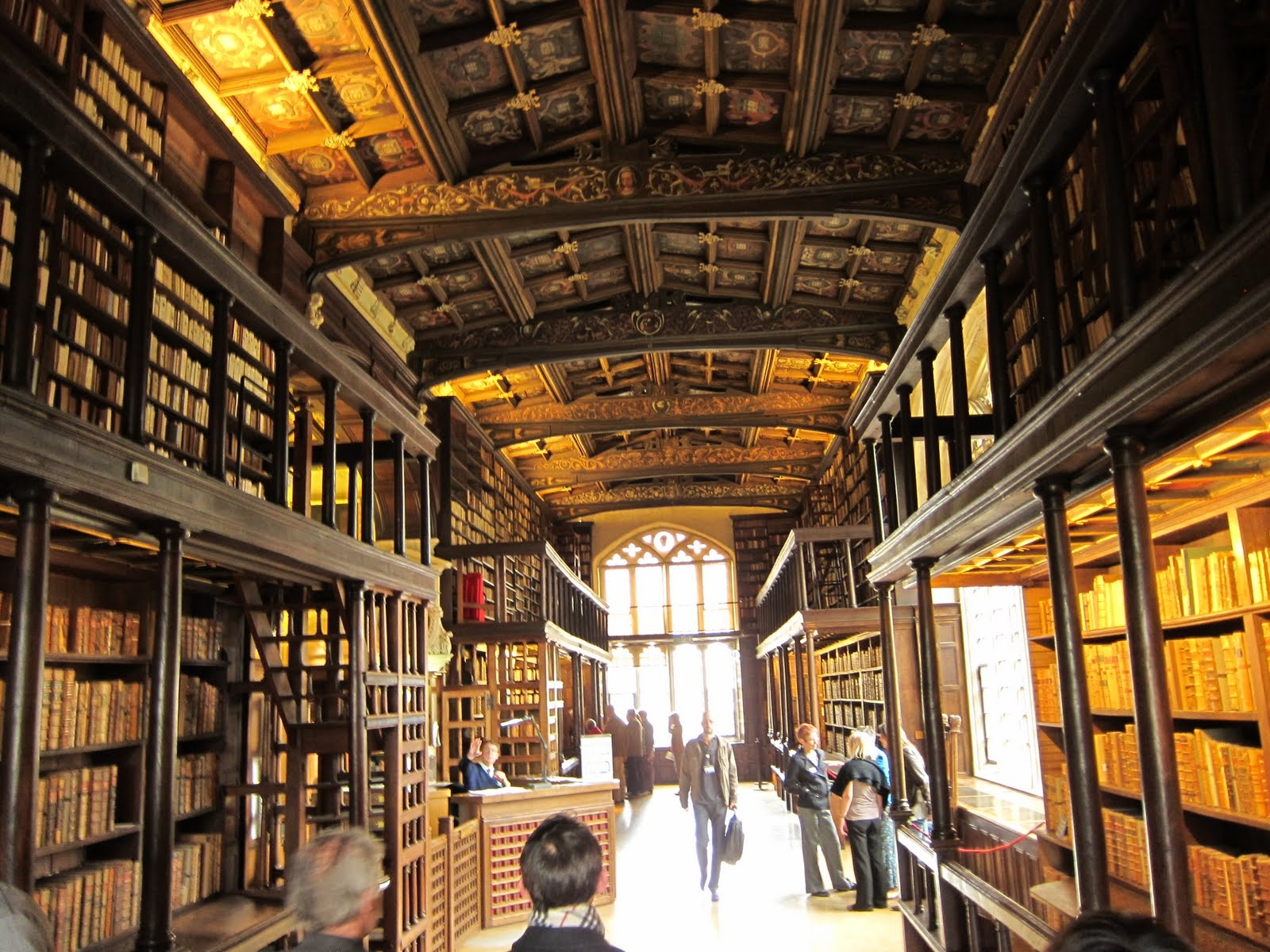 Bodleian Library Oxford Libraries And Books Pinterest For Bespoke Libraries (#4 of 15)