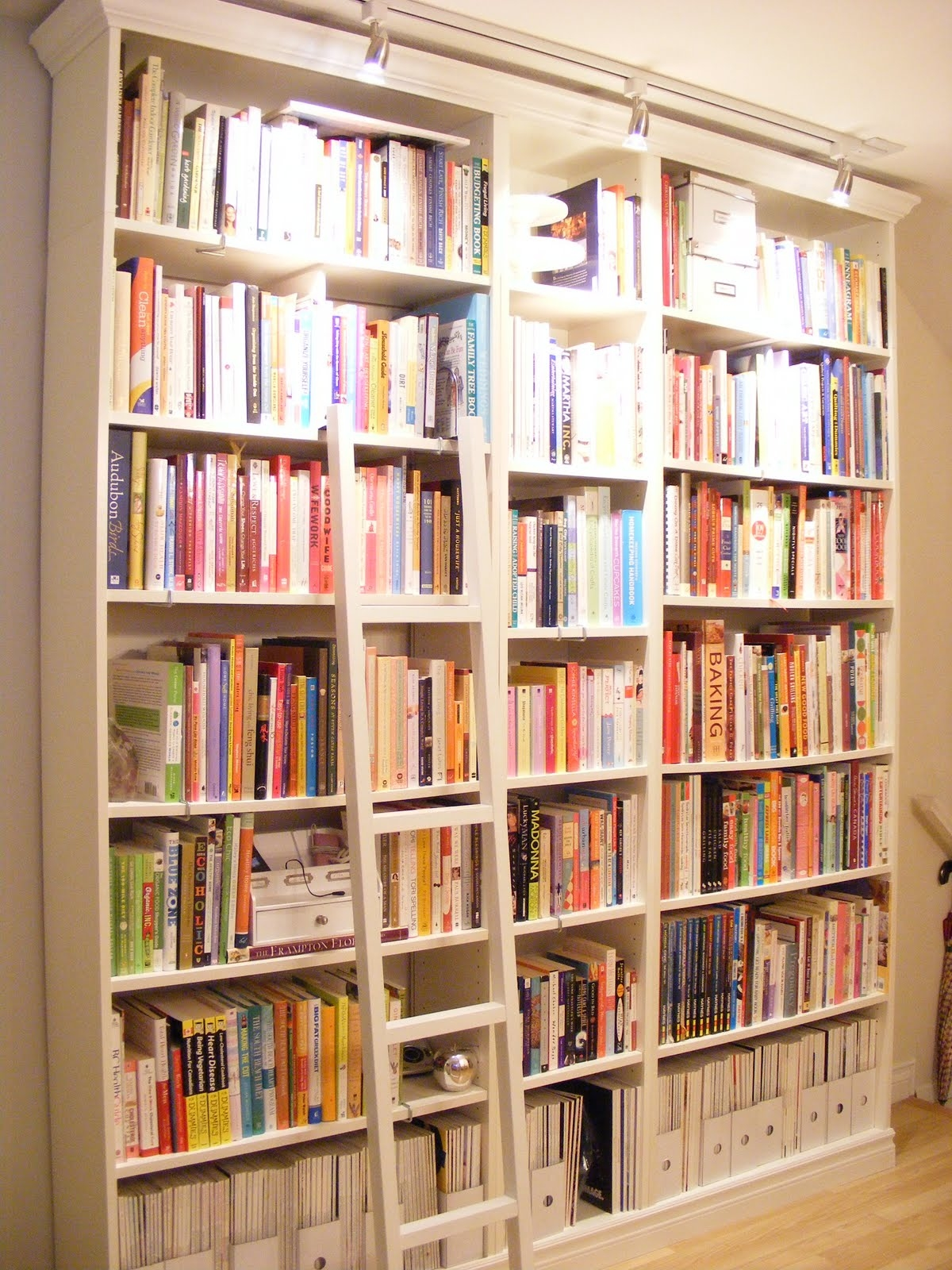 Bookshelves With Ladder Idi Design Within Wall Library Bookcase (#3 of 15)