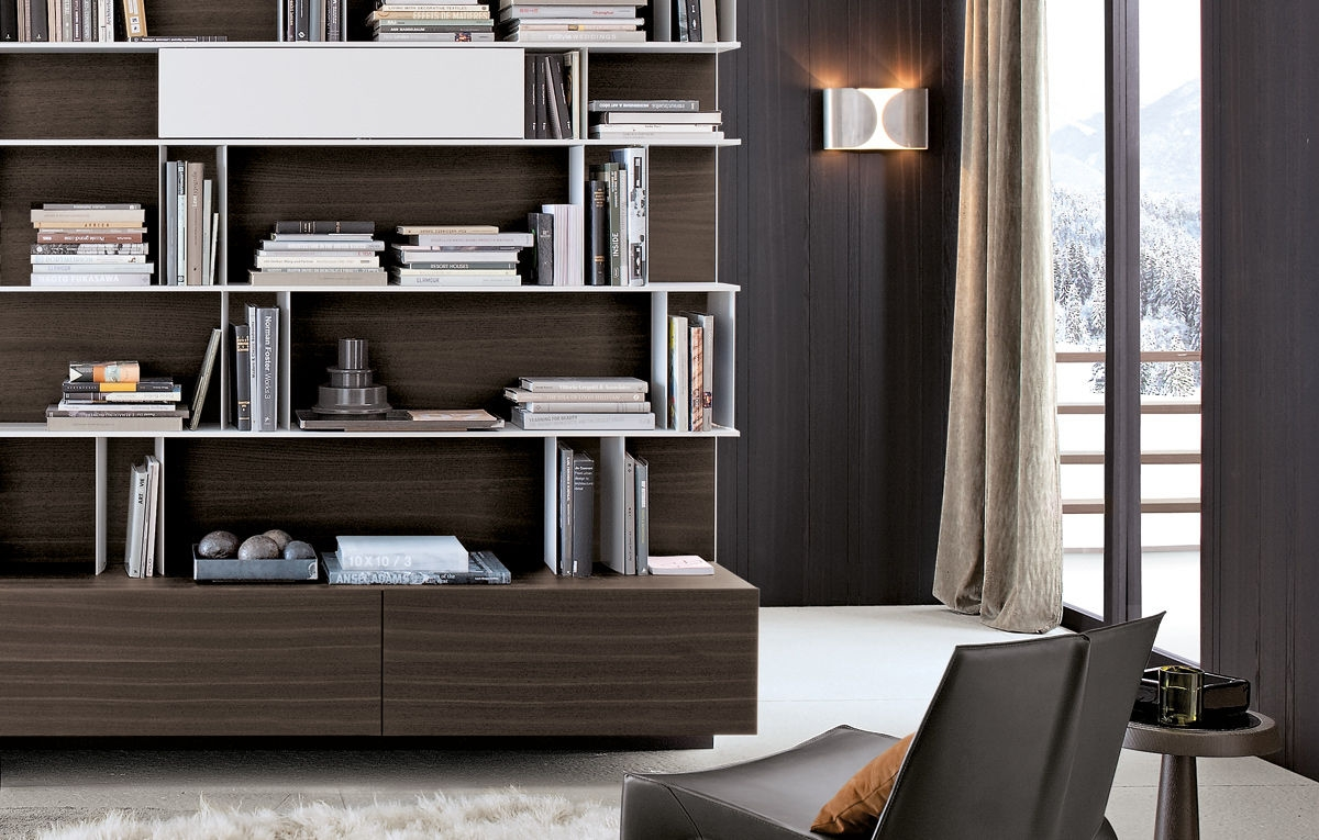 Contemporary Bookcases With Regard To Contemporary Bookcases (#10 of 15)