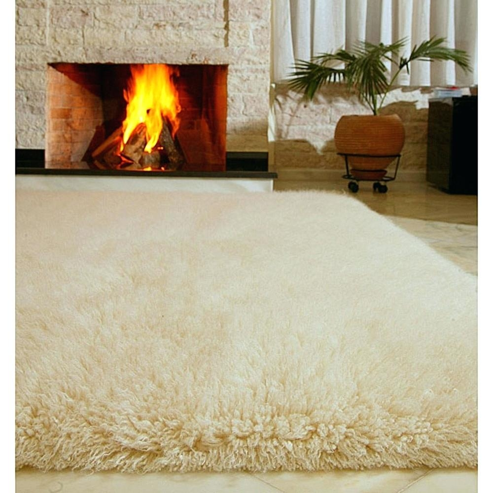 15 Inspirations Of Wool Area Rugs Toronto