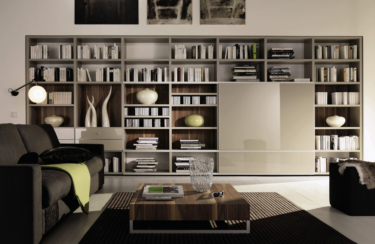15 Best Ideas Of Bookshelf With Tv Space