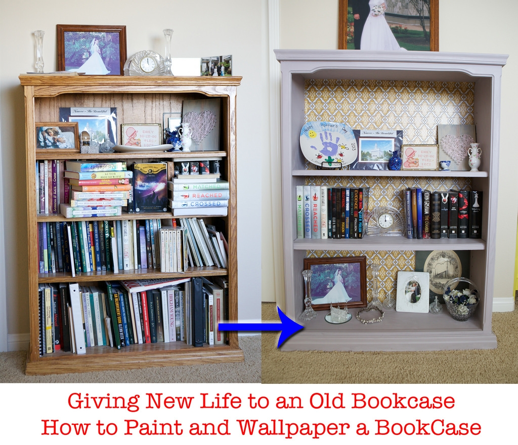 Emmy Mom One Day At A Time Painting A Book Case With Annie Sloan Throughout Painted Bookshelf (#8 of 15)