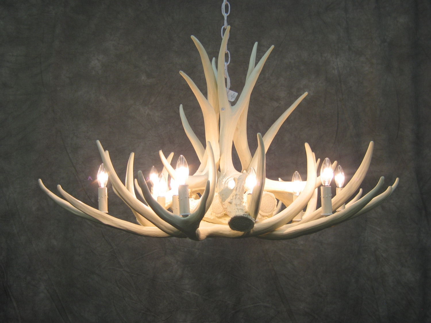 Excellent Faux Antler Chandelier White 31 White Faux Deer Antler With White Antler Chandelier (#3 of 12)