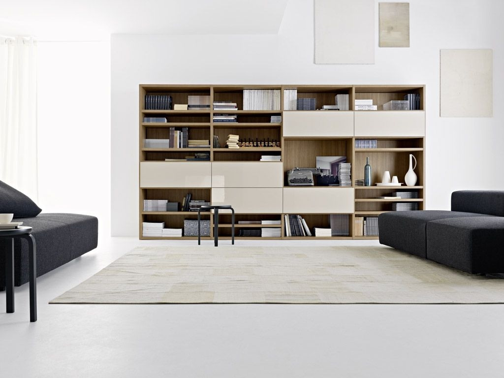 Living Room Best Choices For Your Living Room Design With Ikea Regarding Sitting Room Storage Units (#5 of 15)