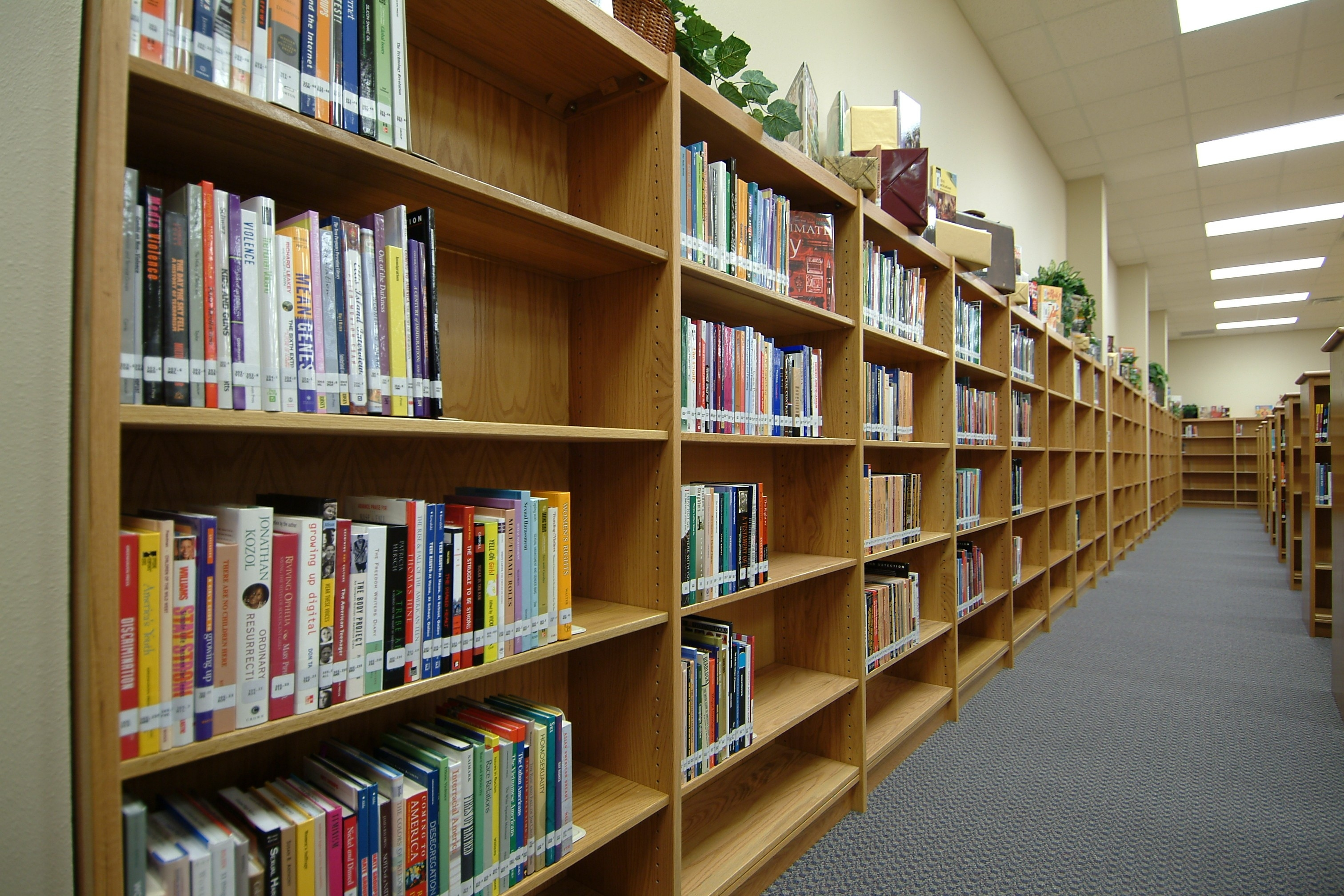 Longo Schools Blog Archive Wall Library Shelving Inside Home Library Shelving Systems (#11 of 15)