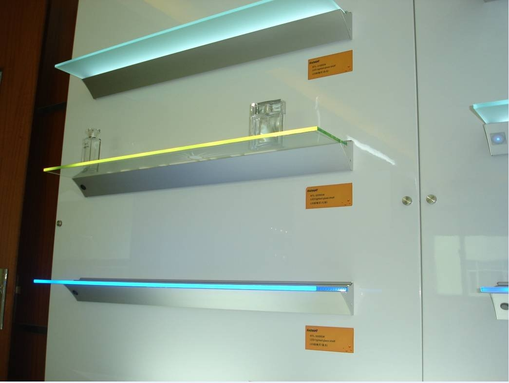 Oec Led Shelf Light Intended For Glass Shelves With Lights (View 3 of 12)