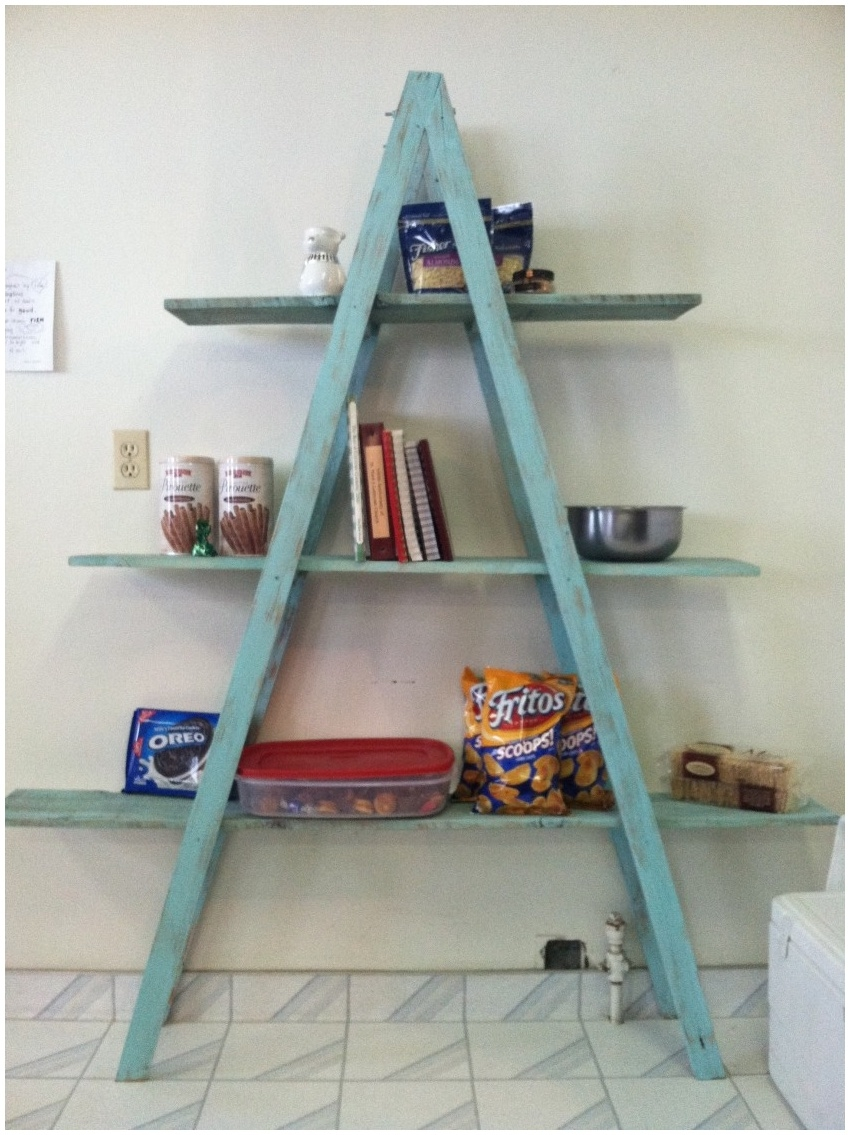 Trendy Corner Space With Various Ladder Shelf Furniture Modern In Ladder Shelves (#14 of 15)