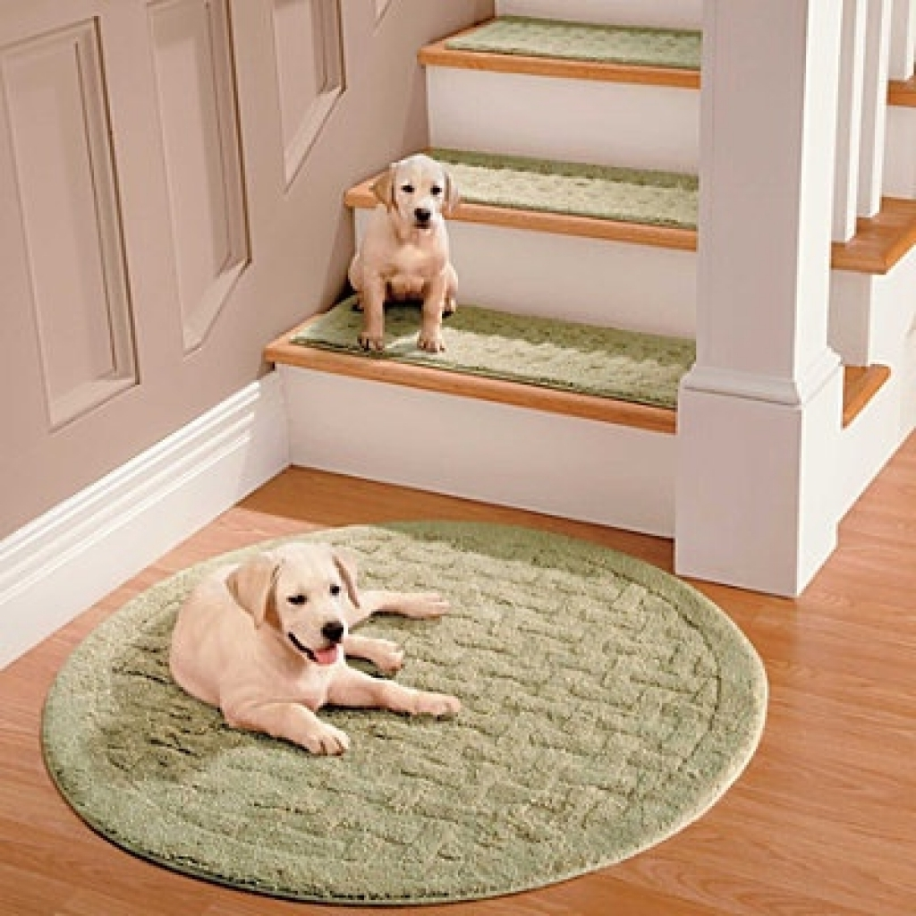 Inspiration About 25 Best Ideas Carpet Stair Treads On Pinterest Regarding