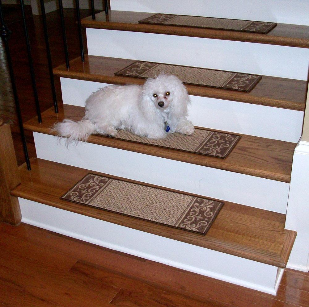 Carpet Stair Treads Caramel Scroll Border Dean Flooring Regarding Stair Tread Carpet Rugs (#1 of 20)
