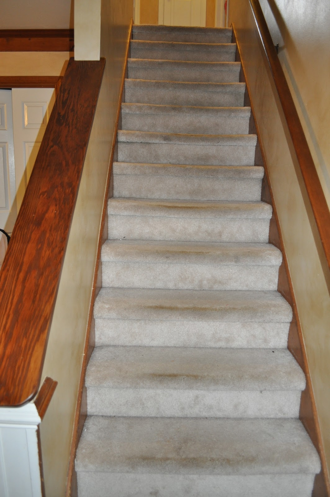 Carpet Stair Treads Make Your Own Carpet Stair Treads U2014 Throughout Bullnose Stair Tread Carpets (#6 of 20)