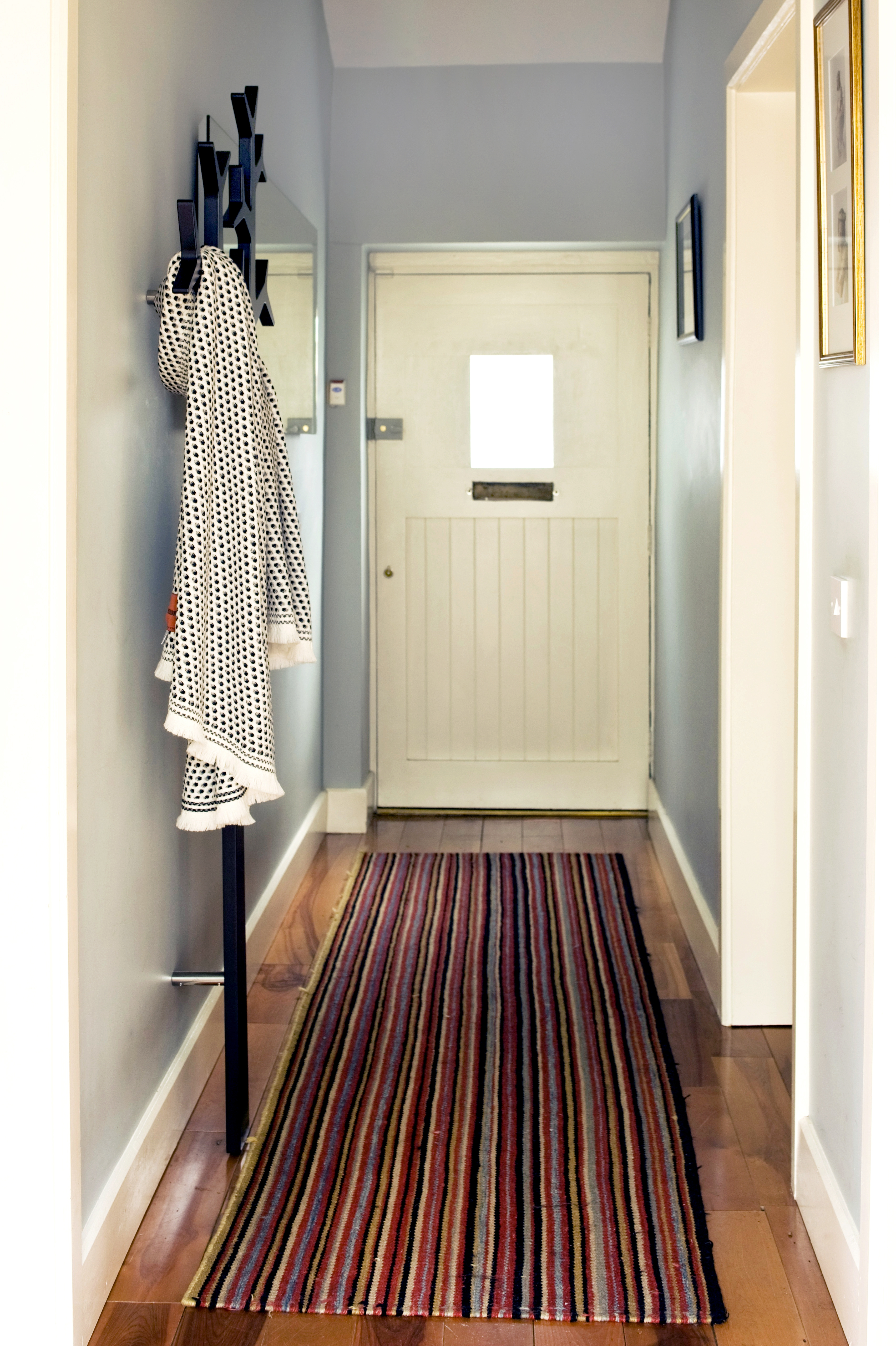 Choosing The Best Type Of Flooring For Dogs And Their Owners Intended For Hallway Runners For Dogs (#6 of 20)