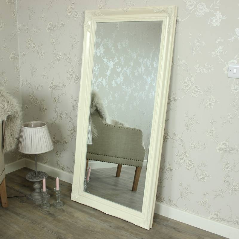 Extra Large Floor Mirror (#14 of 20)
