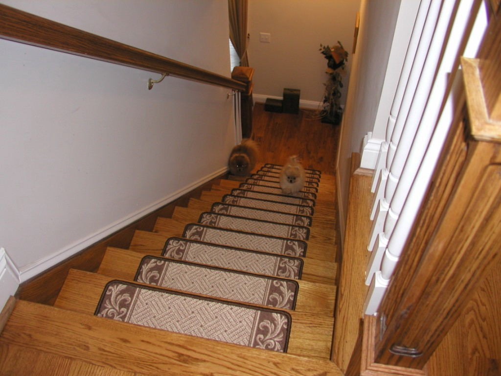 Flooring Pretty Stair Treads Carpet For Stair Decoration Idea Within Stair Tread Carpet Bars (#13 of 20)