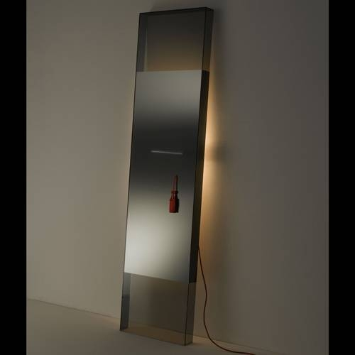 Inspiration about Mirror Floor – Home Design Ideas And Pictures Gallery With Contemporary Floor Standing Mirrors (#4 of 15)