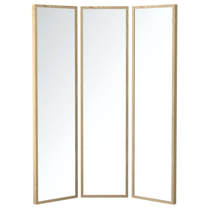 Inspiration about Narrow Wall Mirrors – Amlvideo Throughout Tall Narrow Mirrors (#18 of 30)