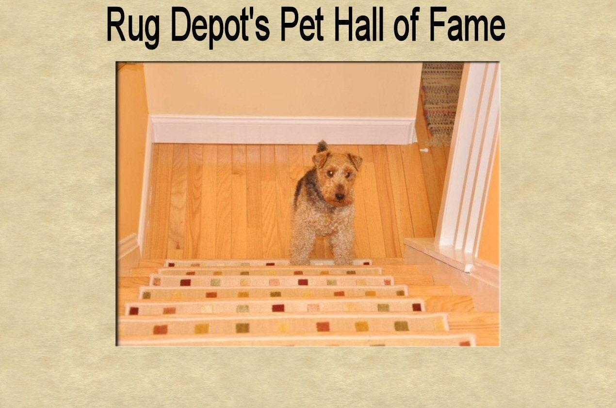 Inspiration About Rug Depot 13 Oriental Carpet Stair Treads 26 X 95  Staircase In Oriental Rug