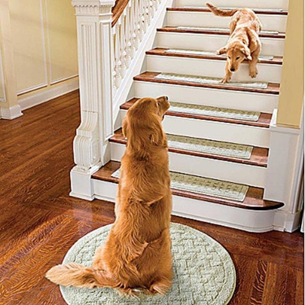 Stair Tread Rugs To Prevent Slippery Accident Rhubarb Decor Stair Intended For Stair Tread Rugs For Dogs (View 18 of 20)