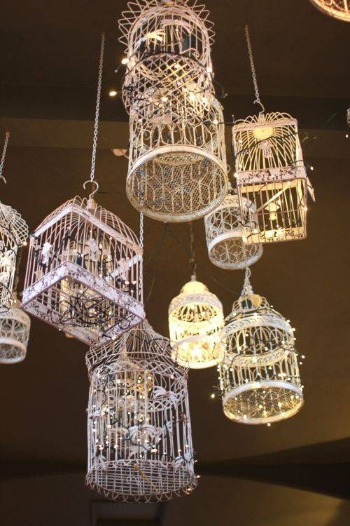 Best 20+ Birdcage Chandelier Ideas On Pinterest | Birdcage Light With Regard To Birdcage Lighting Chandeliers (#9 of 15)