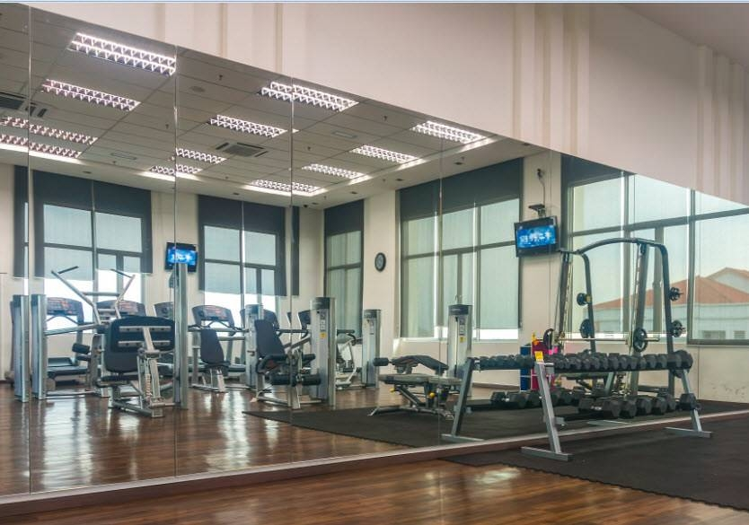 Collection of gym wall mirrors