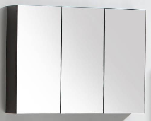 Mirror Bathroom Cabinets For Bathroom Wall Mirror Cabinets (#11 of 15)