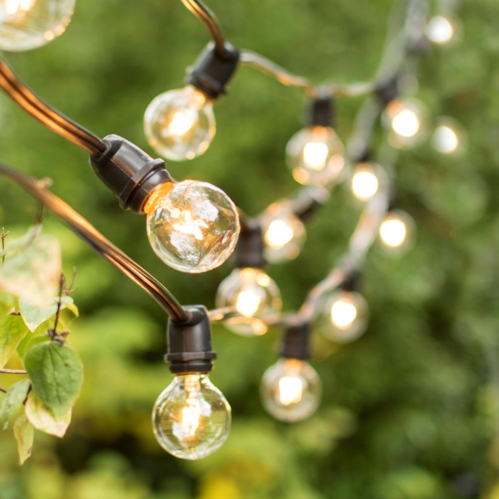 Inspiration about 100Ft Clear Globe Commercial String Lights On Black Wire | Heavy Throughout Commercial Outdoor Hanging Lights (#9 of 15)