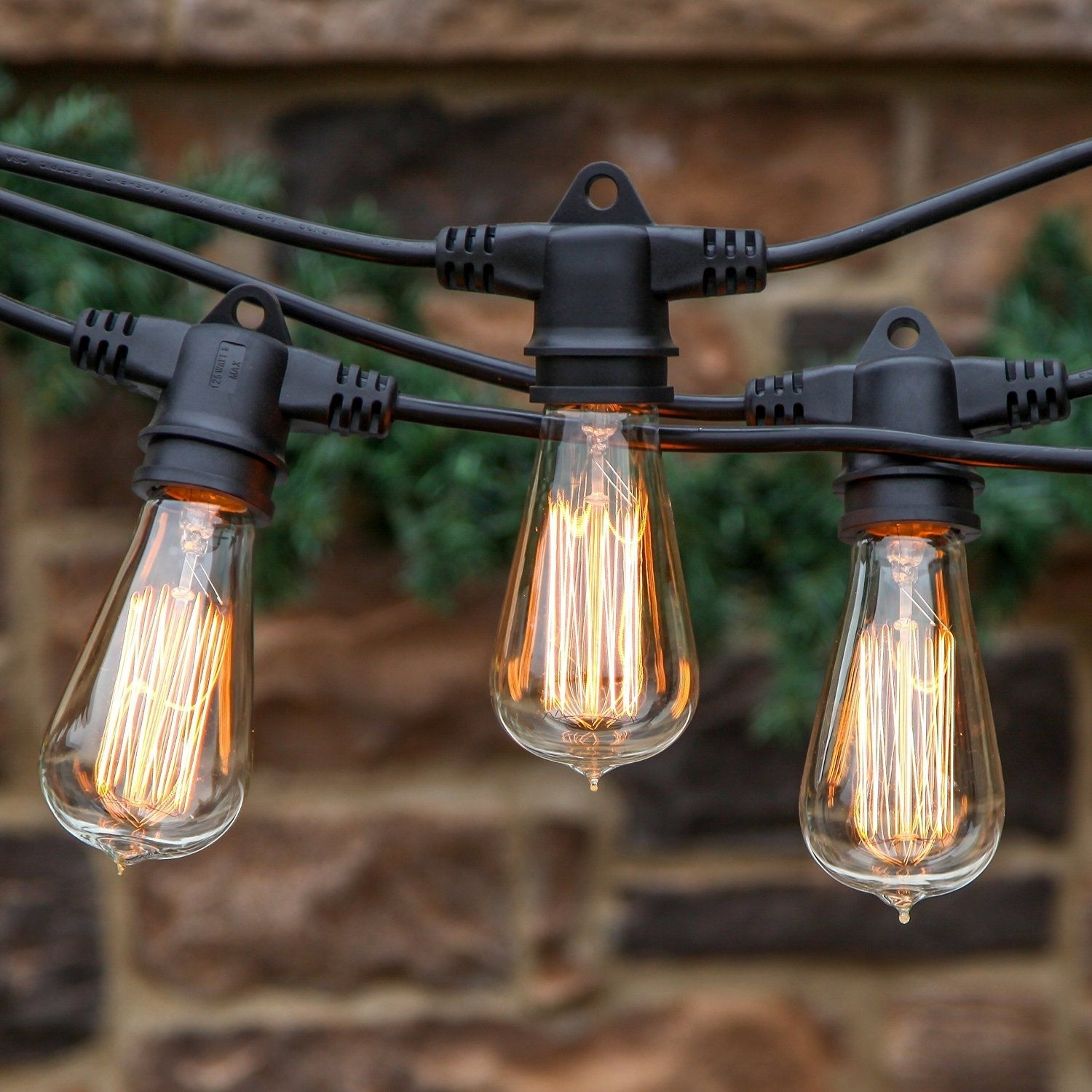 Inspiration about 20 Stunning Rustic Edison Bulbs Wedding Decor Ideas | Bulbs Throughout Commercial Grade Outdoor Hanging Lights (#1 of 15)