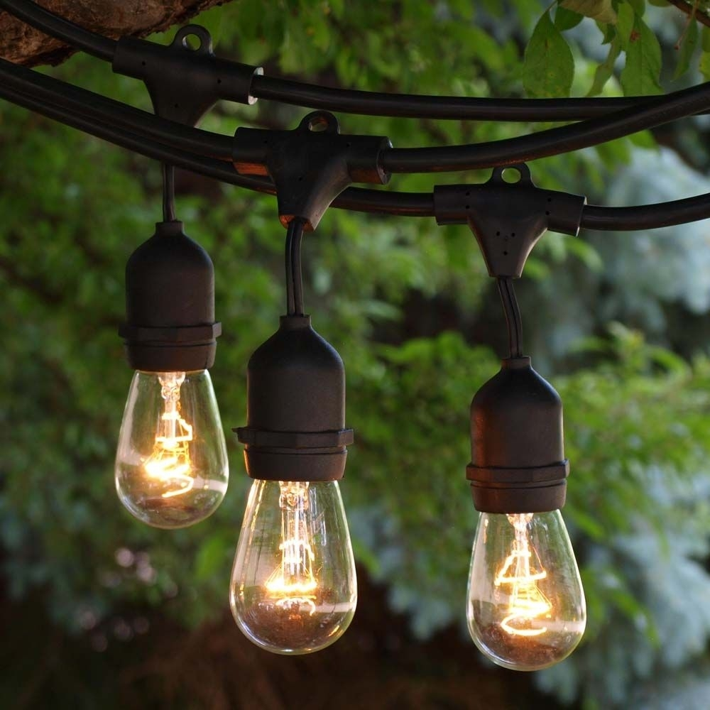 48 Ft Black Commercial Medium Suspended Socket String Light & 11S14 Pertaining To Outdoor Hanging String Light Bulbs (#1 of 15)