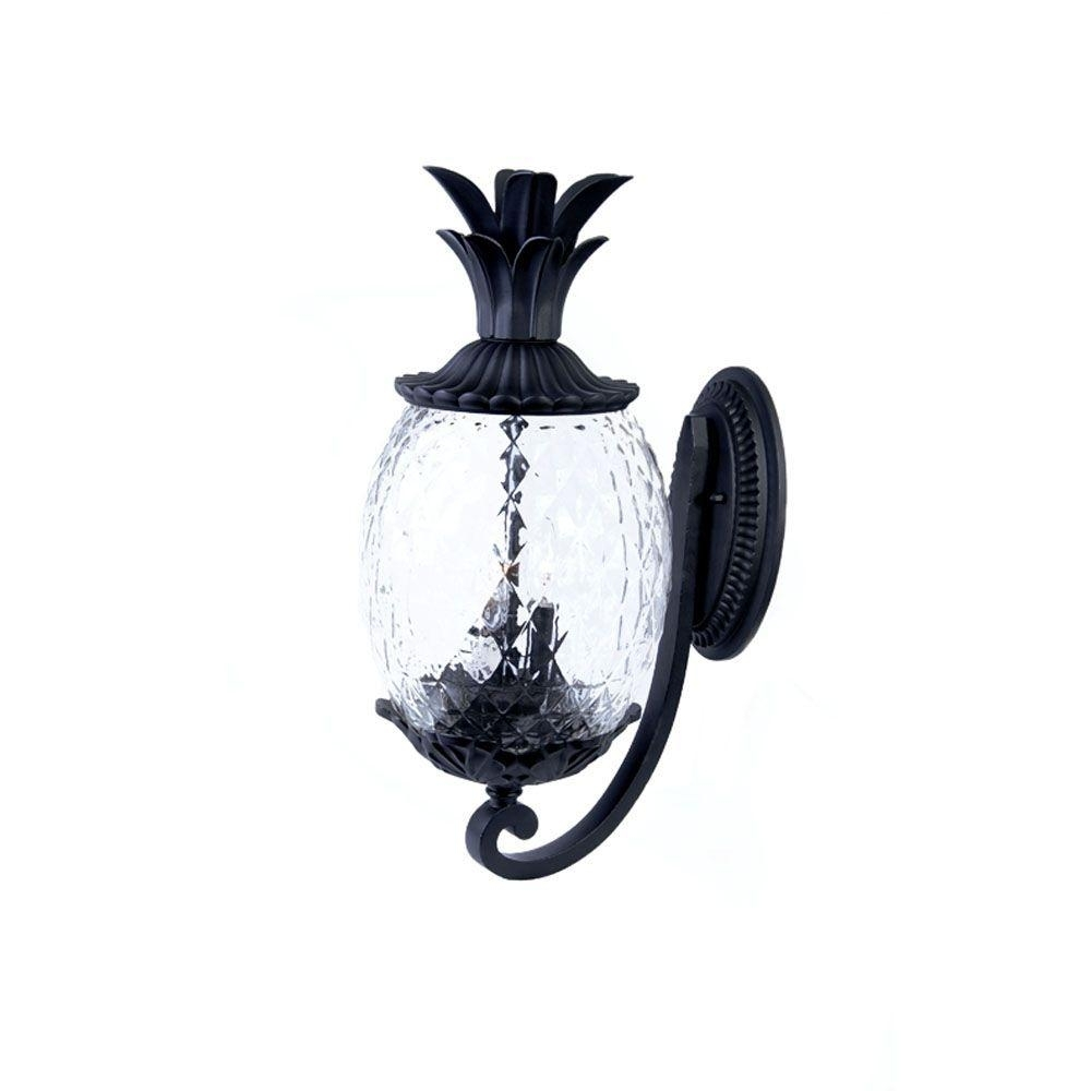 Acclaim Lighting Lanai Collection 2 Light Matte Black Outdoor Wall Within Pineapple Outdoor Wall Lights (#3 of 15)
