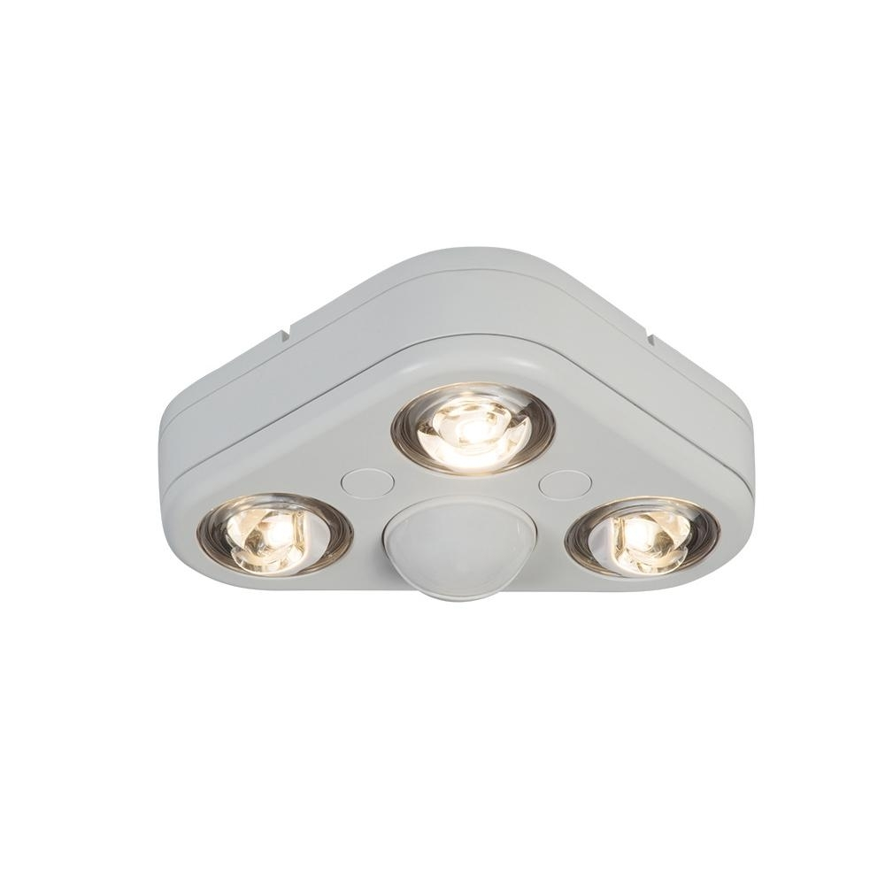 Popular Photo of Outdoor Ceiling Flood Lights