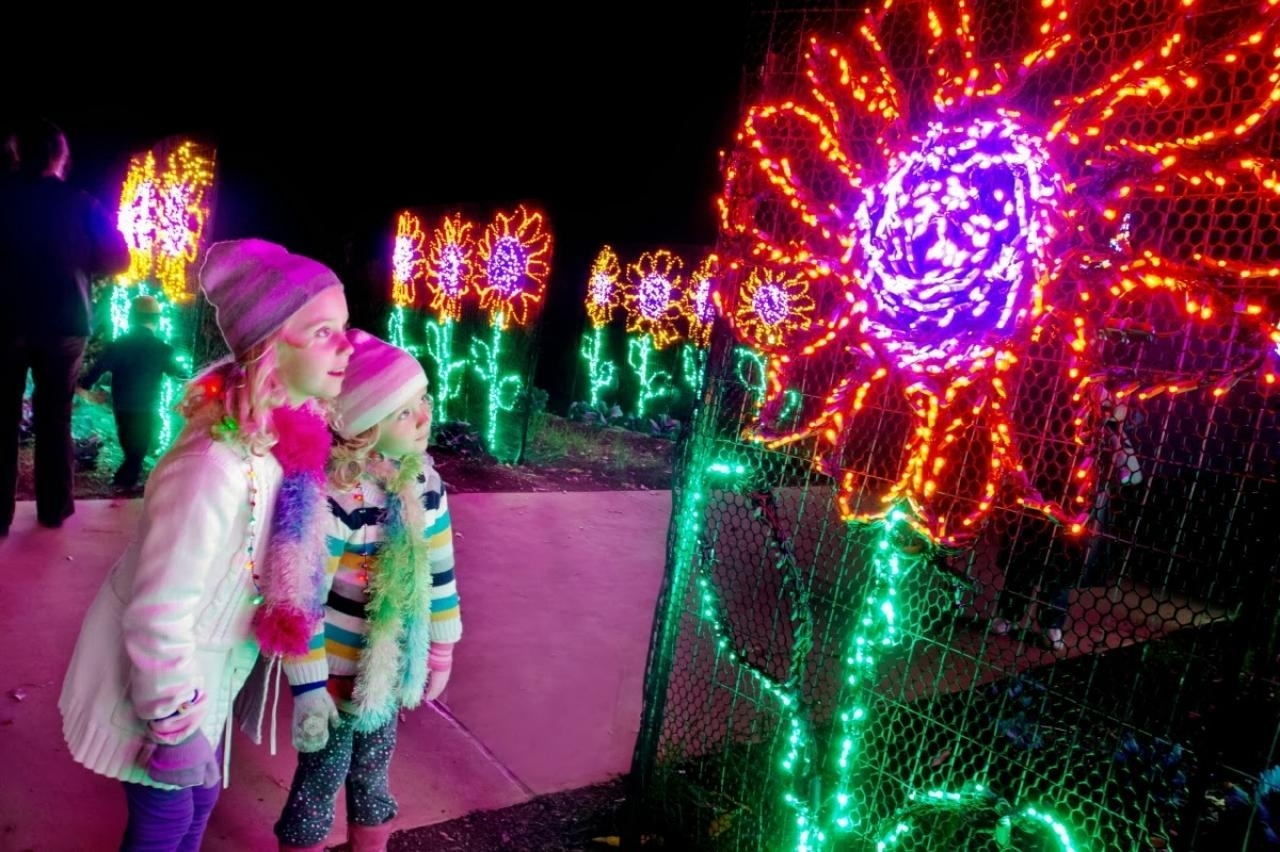 Atlanta Botanical Garden Coupon – Greenfain Inside Botanical Garden Lights (#2 of 15)