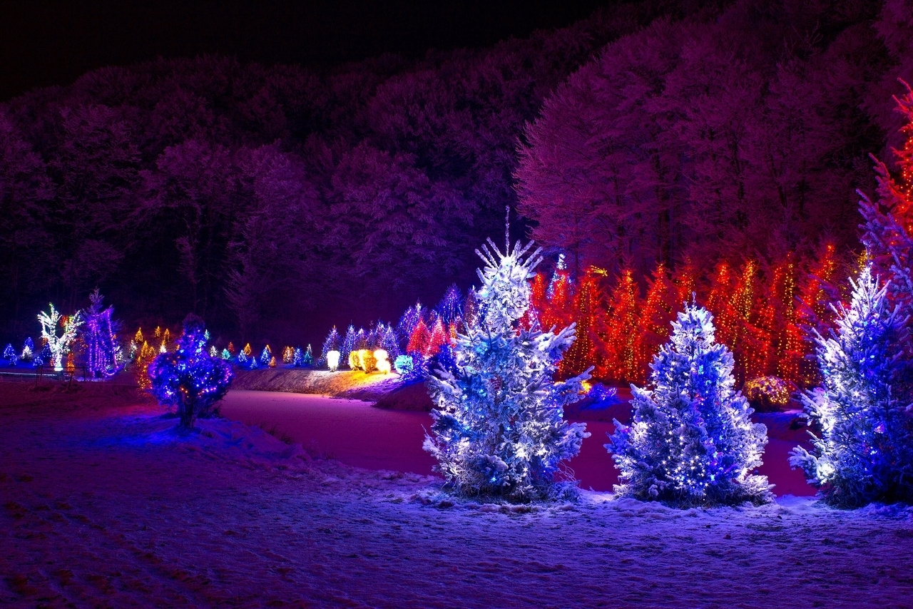 Best Led Lights For Outdoor Trees • Outdoor Lighting For Hanging Outdoor Christmas Lights In Trees (#1 of 15)