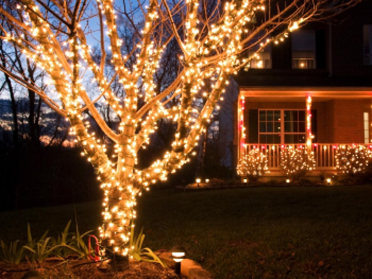 Buyers Guide For The Best Outdoor Christmas Lighting | Diy Regarding Outdoor Hanging Tree Lights (View 14 of 15)