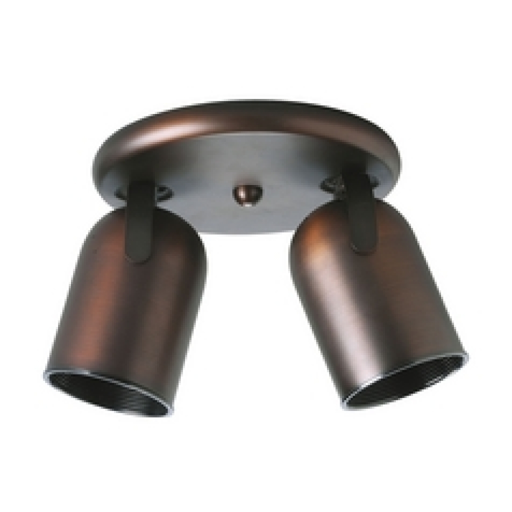 Ceiling Light Directional Spot Lights | Destination Lighting In Within Outdoor Directional Ceiling Lights (#2 of 15)