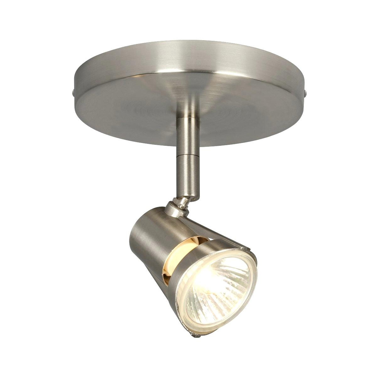 Ceiling Lights ~ Directional Ceiling Light Adjustable Rail For Or Intended For Outdoor Directional Ceiling Lights (#5 of 15)