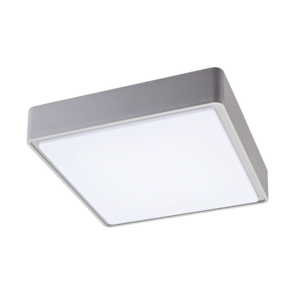 Ceiling Lights & Lamps, Lighting Expert   Eurotech Lighting Nz With Regard To Plastic Outdoor Ceiling Lights (#2 of 15)