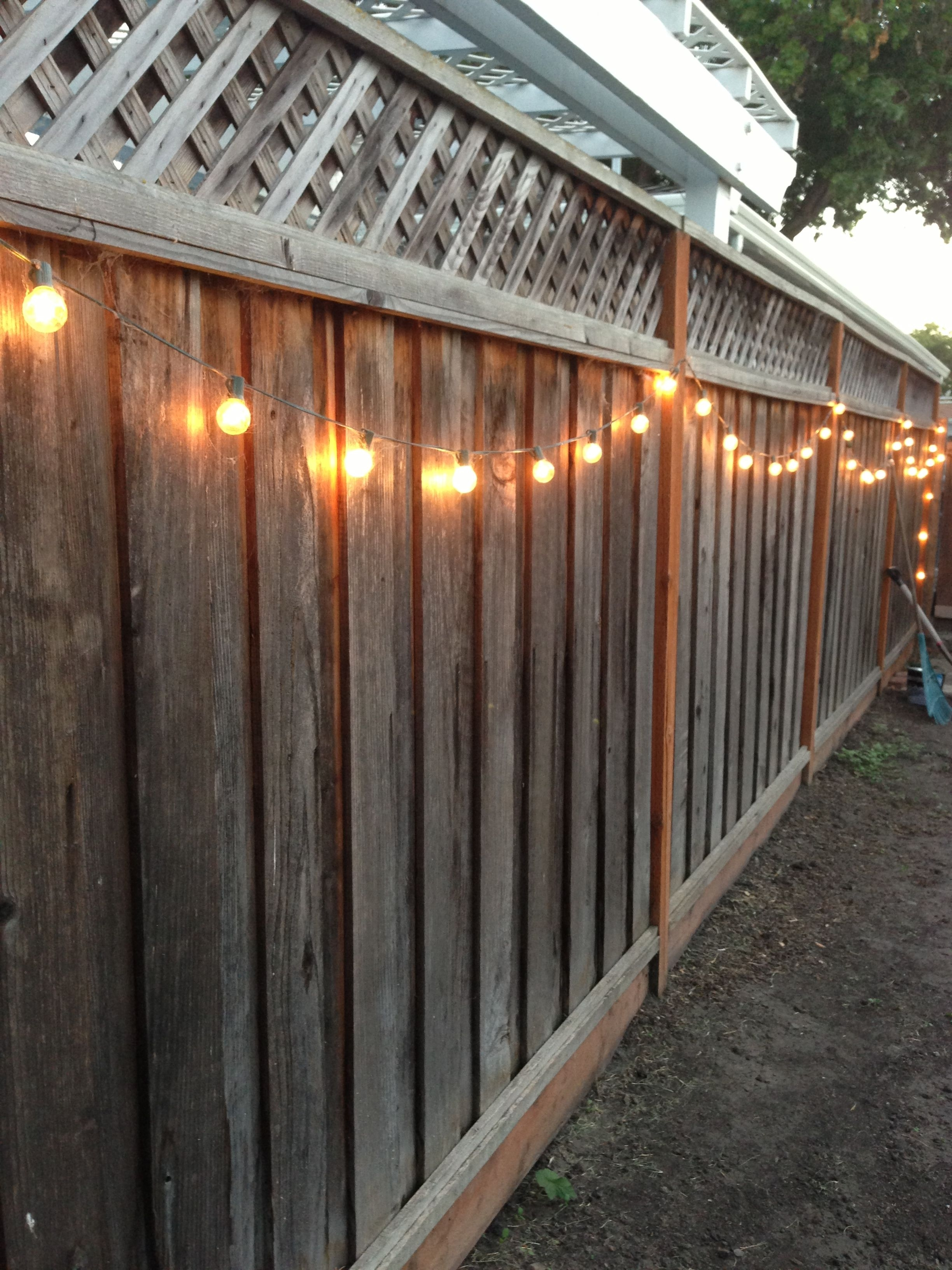 Inspiration about Diy Backyard Lighting. Hang Lights On Your Fence! | Diy | Pinterest Throughout Hanging Outdoor Lights On Fence (#1 of 15)
