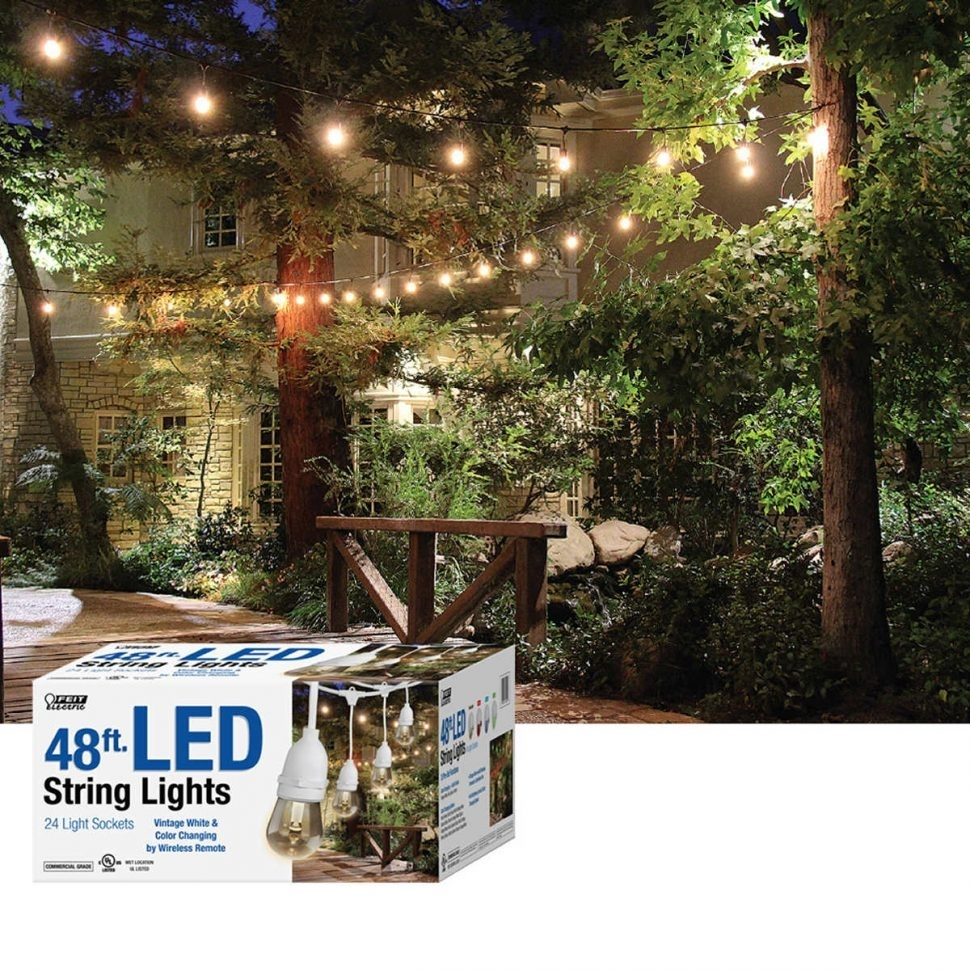 Inspiration about Diy : Feit Led Indooroutdoor Waterproof Colour Changing Outdoor Within Hanging Outdoor String Lights At Costco (#11 of 15)