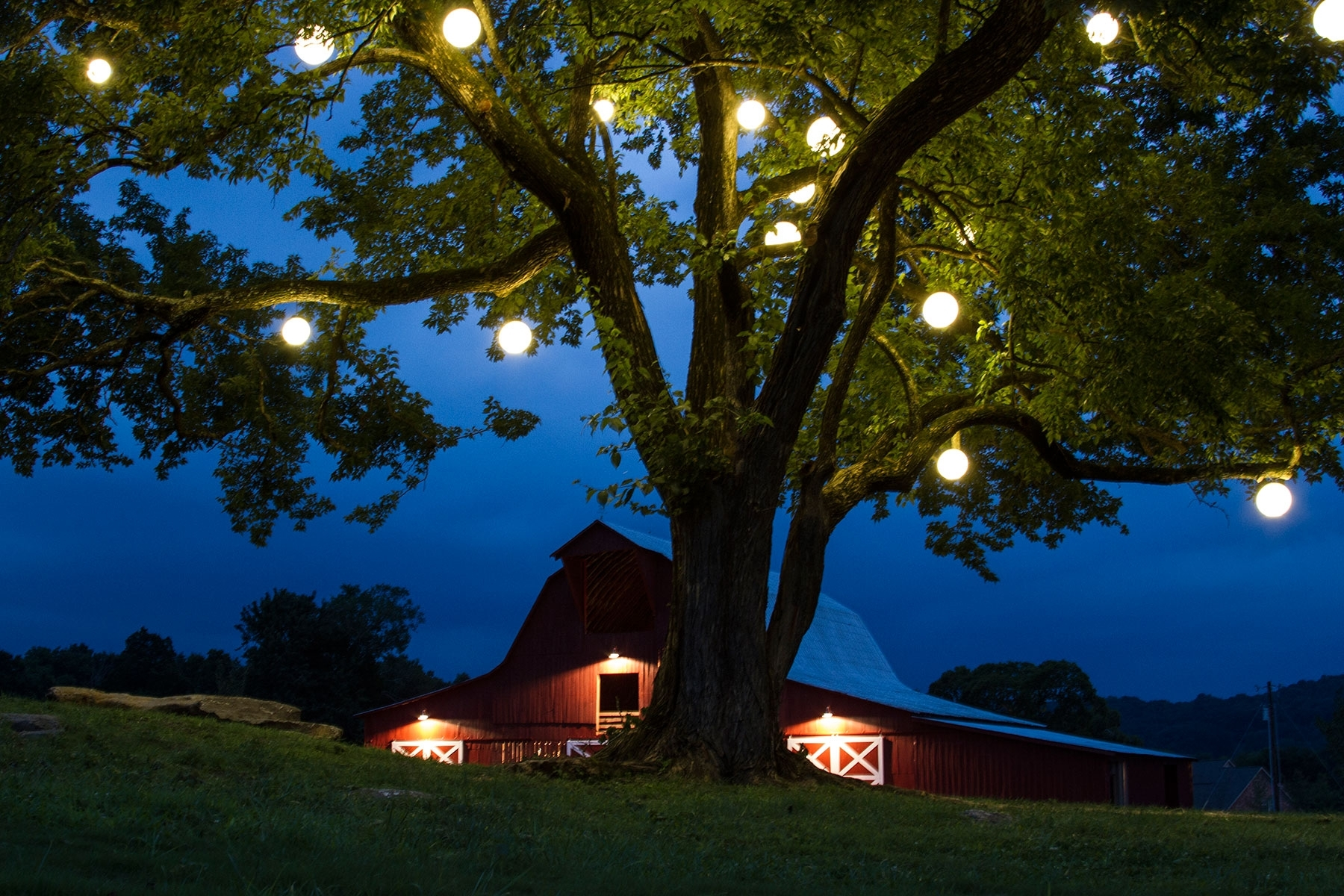 Diy : Outdoor Hanging Lights For Stylish Garden Ideas With Big Tree Inside Hanging Lights On An Outdoor Tree (#10 of 15)