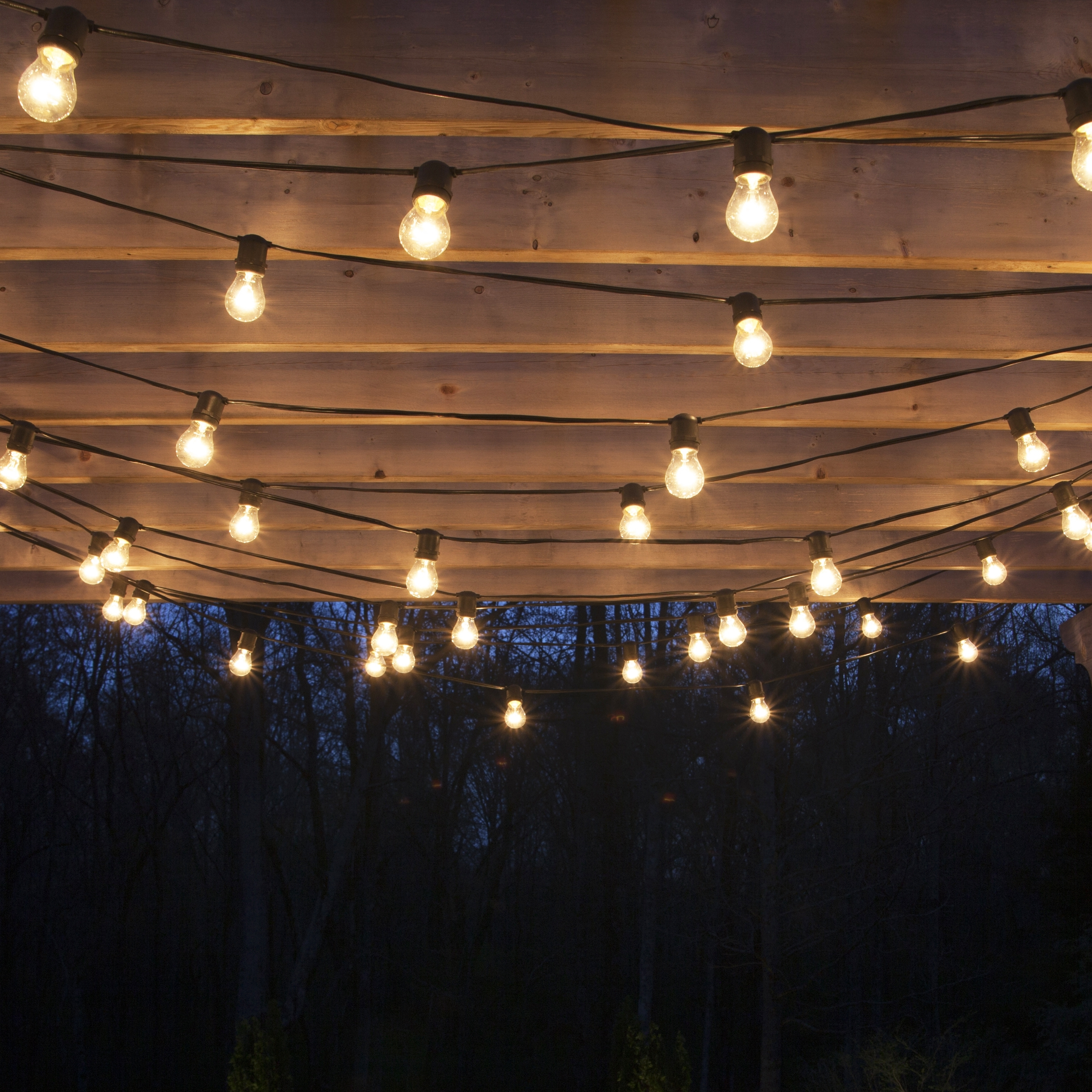 Garden Design With Cozy Outdoor Lighting Ideas On Plus Hanging Throughout Outdoor Hanging Lights Bulbs (#5 of 15)