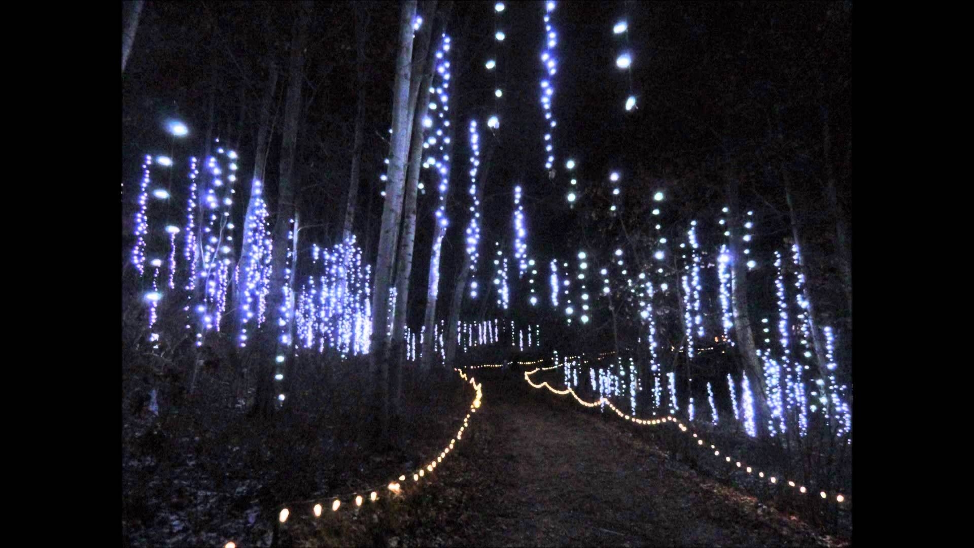 Green Bay Botanical Garden Of Lights – Youtube In Botanical Garden Lights (View 3 of 15)