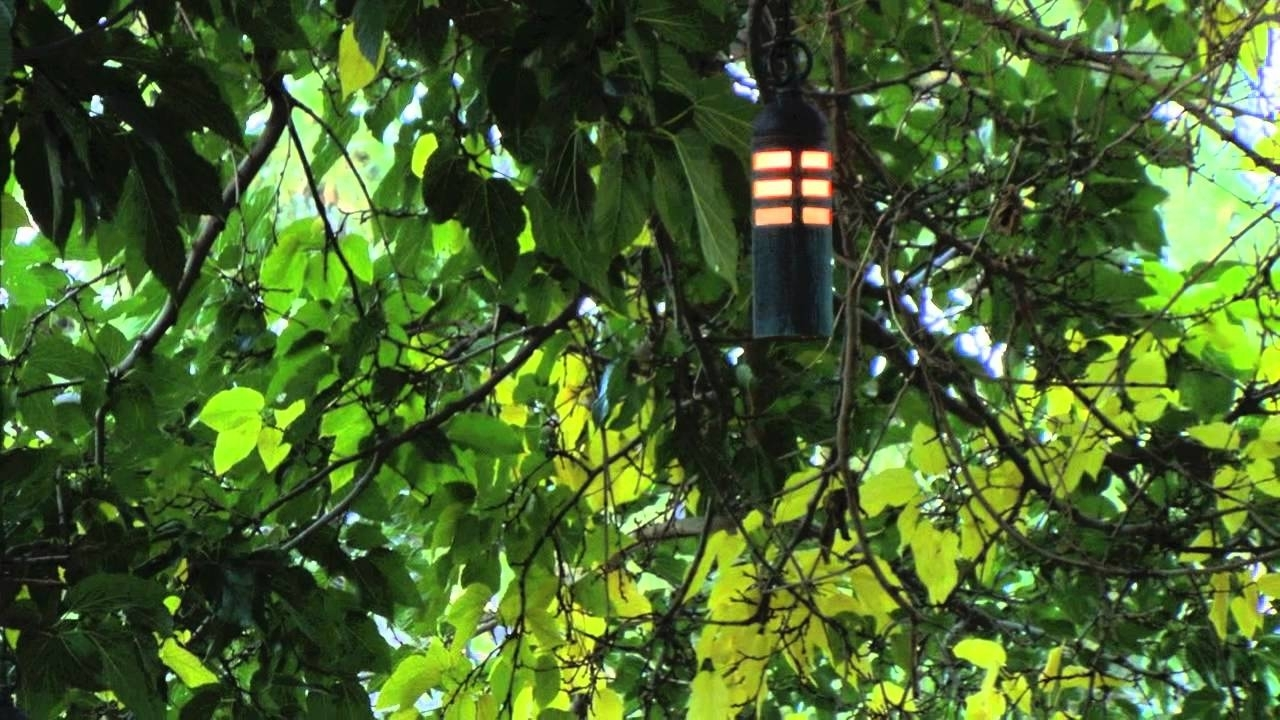 Hanging Tree Landscape Lighting Fixtures – Youtube Intended For Outdoor Low Voltage Hanging Tree Lights (View 6 of 15)