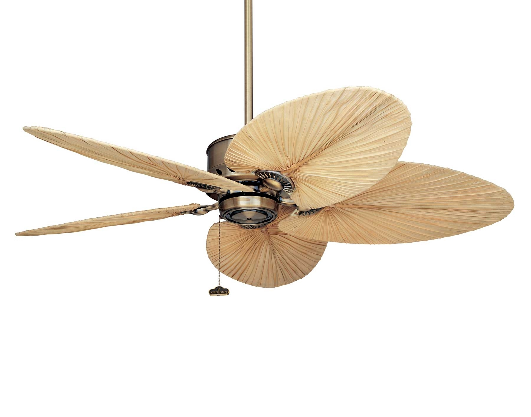 Image Result For Wooden Ceiling Fans With Lights Leaf Australia Regarding Outdoor Ceiling Fans With Tropical Lights (#12 of 15)